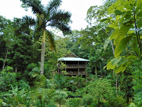 (SO-210) BEAUTIFUL JUNGLE HOME WITH CARIBBEAN VIEWS!