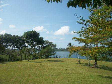 (MN-305) 7+ACRES IN TIERRA OSCURA
