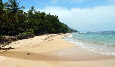 (BA-700) TITLED BEACH FRONT PROPERTY IN PUNTA VIEJA ON BASTIMENTOS---SURFER'S PARADISE!