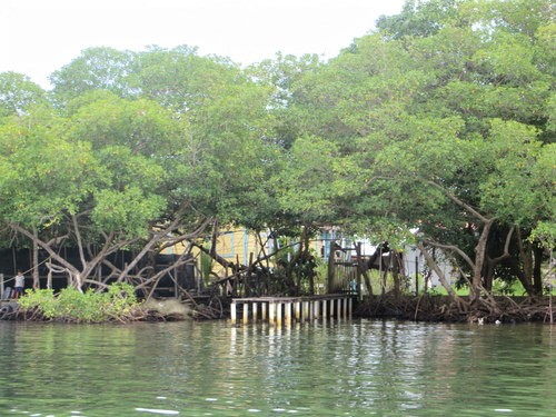 (CO-1490) TITLED WATERFRONT PROPERTY IN SAIGON BAY
