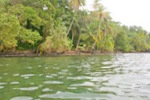 (BA-800) FULLY PREMITTED WATERFRONT DEVELOPEMENT ON BASTIMENTOS FOR SALE