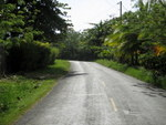 (CO-5000) DESIRABLE TITLED LOTS ON ISLA COLON
